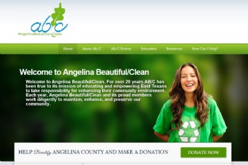 View Portfolio Item: Angelina Beautiful / Clean